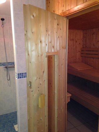 Les Terrasses de Trestel : sauna