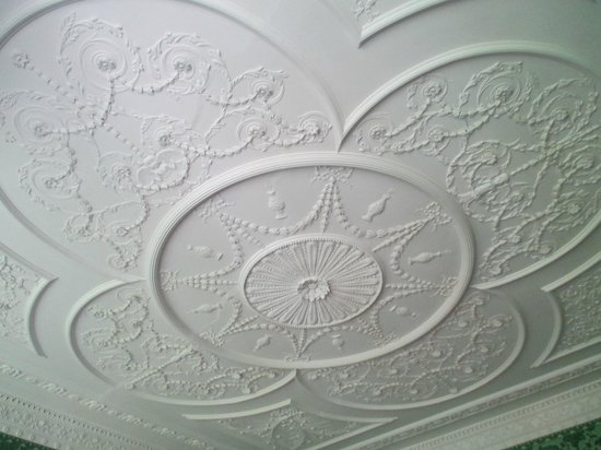 Kenmore Plantation and Gardens: Sculptured Plaster Ceiling