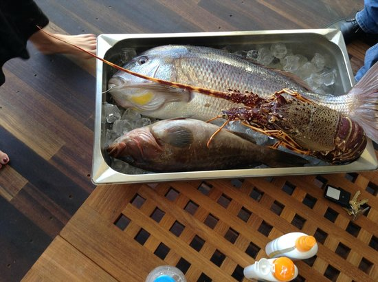 Porto Zante Villas & Spa: Catch of the day