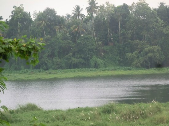Birthplace of Sri Adi Shankara: kalady river