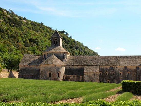 Abbaye Notre-Dame de Sénanque : abbaye de senanque