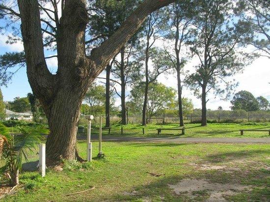 Bellhaven Caravan Park: Green Area