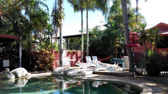 Travellers Oasis Backpackers: Pool