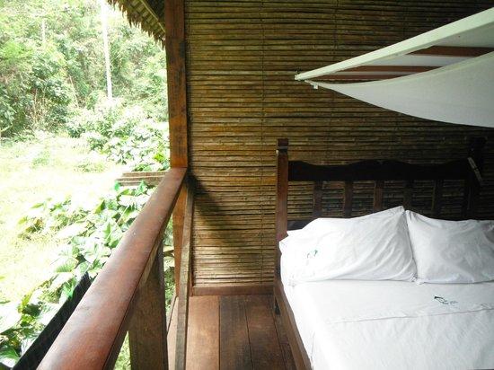 Refugio Amazonas: Room daytime