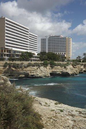 Complejo Calas de Mallorca : Hotel Chihuahuas on left Mastines on right