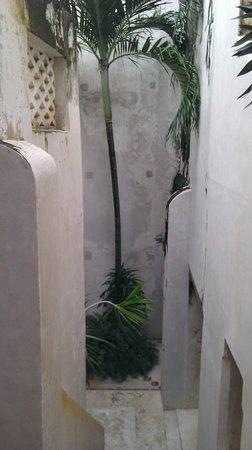 Baytil Ajaib: To courtyard