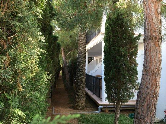Inturotel Sa Marina: Zimmer im Block A mit Sicht direkt auf die Hecke - Dahinter die Straße / Parkplatz