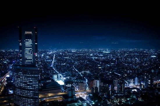 Park Hyatt Tokyo: View from my hotel room