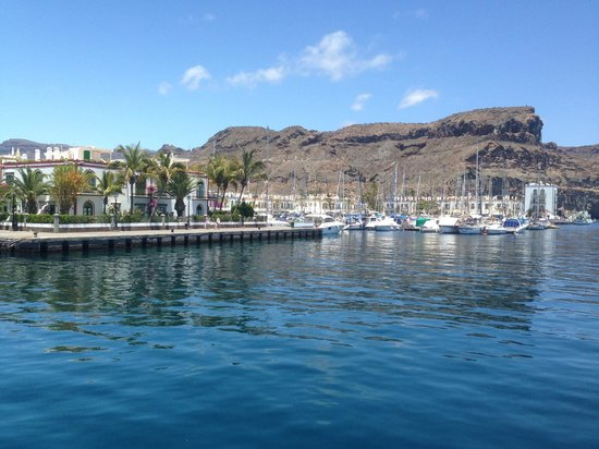 Cordial Mogan Valle : Mogan Harbour