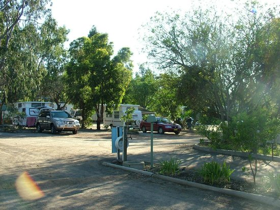 Kojonup Caravan Park: View from office to Drive through shady sites