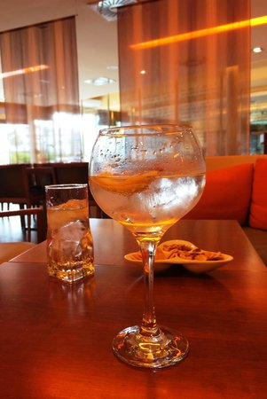 Novotel Valladolid: G&T to perfection