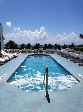 The Hotel of South Beach : Superbe piscine