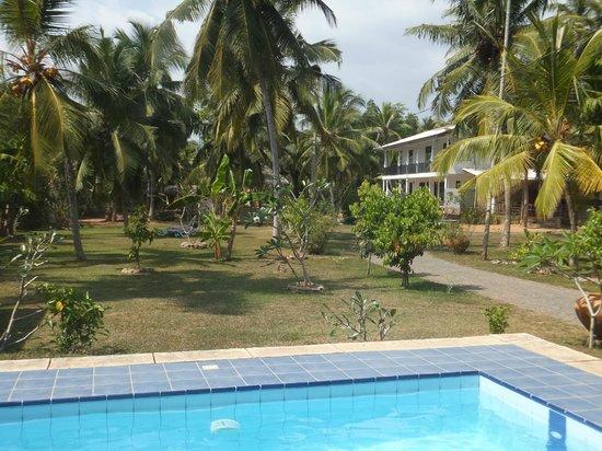 Villa Gaetano: vista del hotel desde la piscina