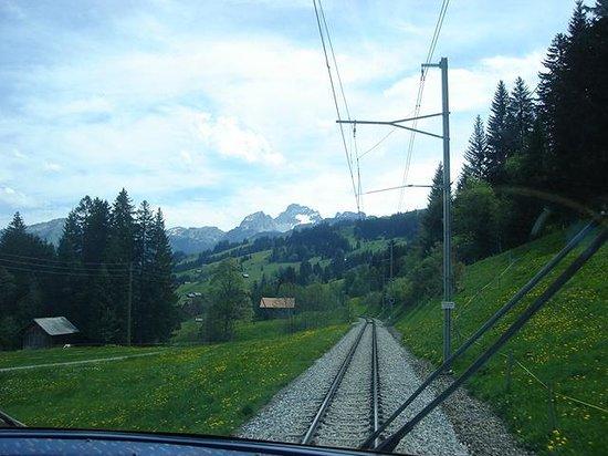 GoldenPass Line : Gentle scenery
