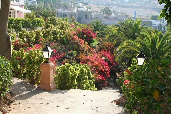 Bahia del Duque: Garten