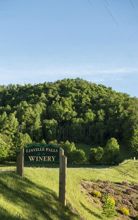 Linville Falls Winery : Photography by Sam English