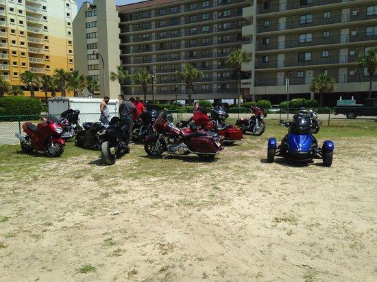 north myrtle beach bbw personals 50, north myrtle beach candyygirl3k 53, myrtle beach a zoosk member 67, north myrtle beach trish 54, north myrtle beach fun in the sun single bbw.