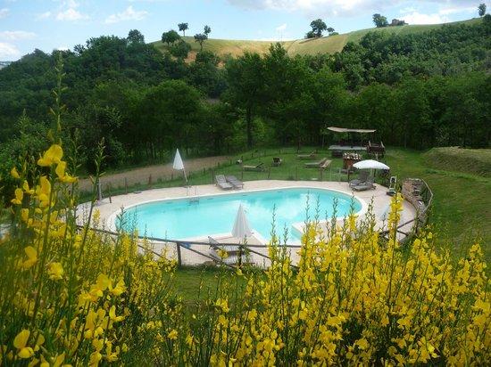 Agriturismo Ramuse: Pool area