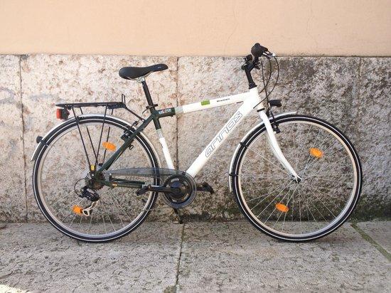 Bike Evolution S. Zeno: 4 bike touring aluminium 7V man