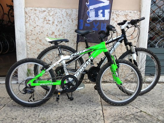 "Bike Evolution S. Zeno: 3 bike bimbo 24"" 1 bike bimbo 20"""
