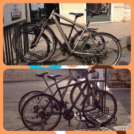 Bike Evolution S. Zeno: Trekking bikes for rent