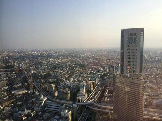 Park Hyatt Tokyo : room view