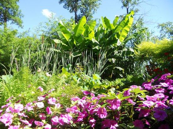 Creation Museum: Botanical Garden Walk