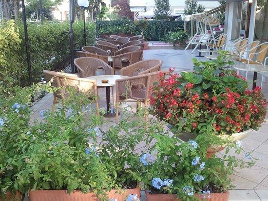Hotel Donatello: Giardino