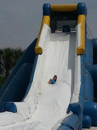 Camp Gulf: Hippo Slide
