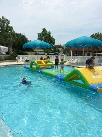 Camp Gulf: Pool obstacle course...love it!