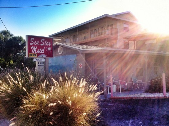 Sea Star Motel & Apts. : view from the street