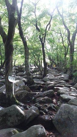 Beomeosa-Tempel: 爬山路線