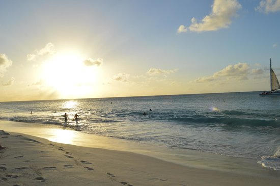 Eagle Beach: Pristine.