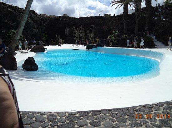 Jameos Del Agua: zwembad.