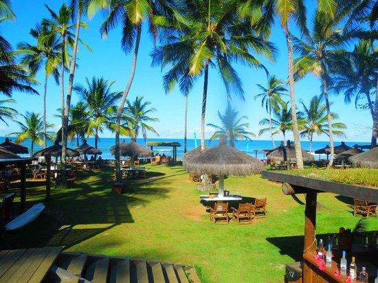 Itacarezinho Beach : Restaurante Itacarezinho