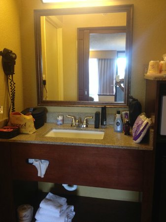 Rosen Inn International: bathroom sink area