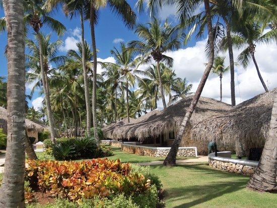 Viva Wyndham Dominicus Beach: très beau et propre