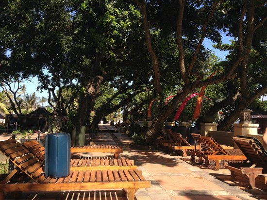 Club Bali Suites: Lovely shady area overlooking the beach