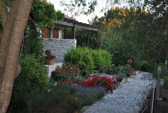Poisson Rouge : O jardim