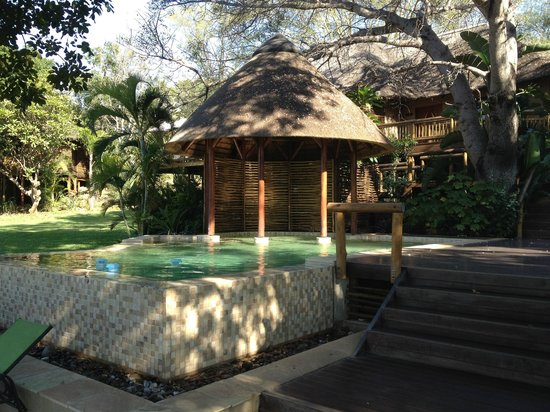 Naledi Bushcamp and Enkoveni Camp : Pool area