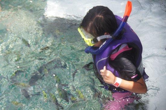 Pulau Payar Marine Park: This little kid is enjoying herself too