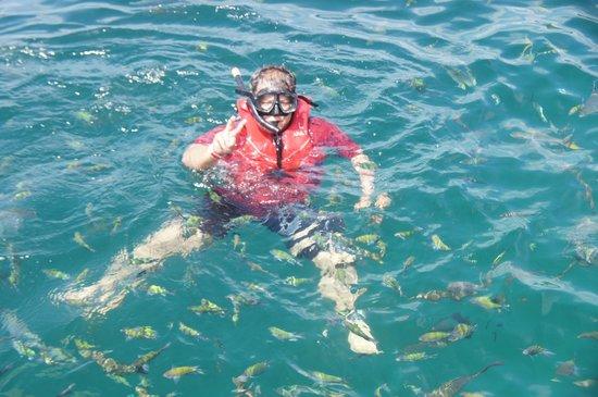 Pulau Payar Marine Park: Swimming with fish