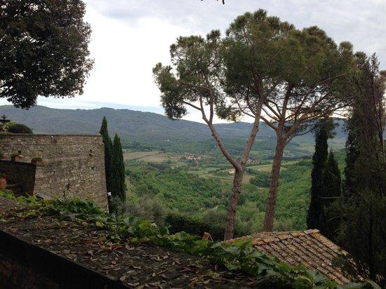 Castello Vicchiomaggio : 1