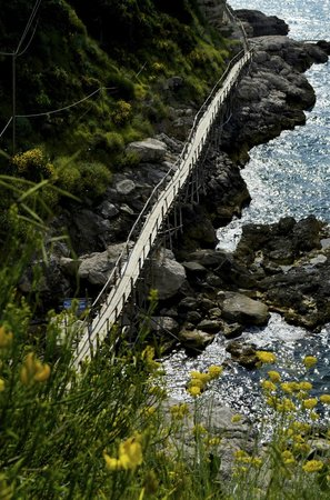 Sorrento Hiking: path to somewhere beautiful