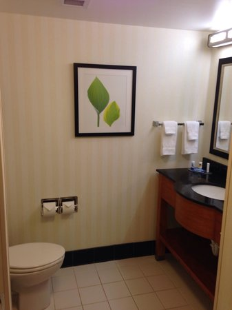 Fairfield Inn & Suites Sevierville Kodak : The spacious bathroom