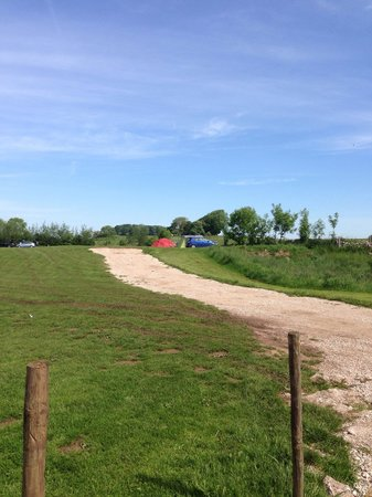 Common End Farm Campsite: Road to camping