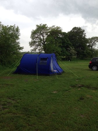 Common End Farm Campsite: Our little tent