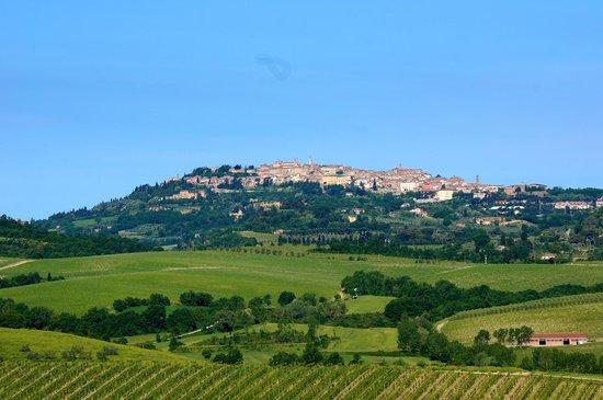 Relais Villa Grazianella - Fattoria del Cerro : Montepulciano