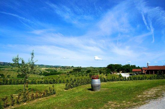 Relais Villa Grazianella - Fattoria del Cerro : Vista dall'ingresso
