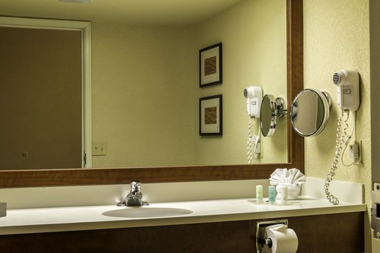 Comfort Suites Miami / Kendall: Bathroom